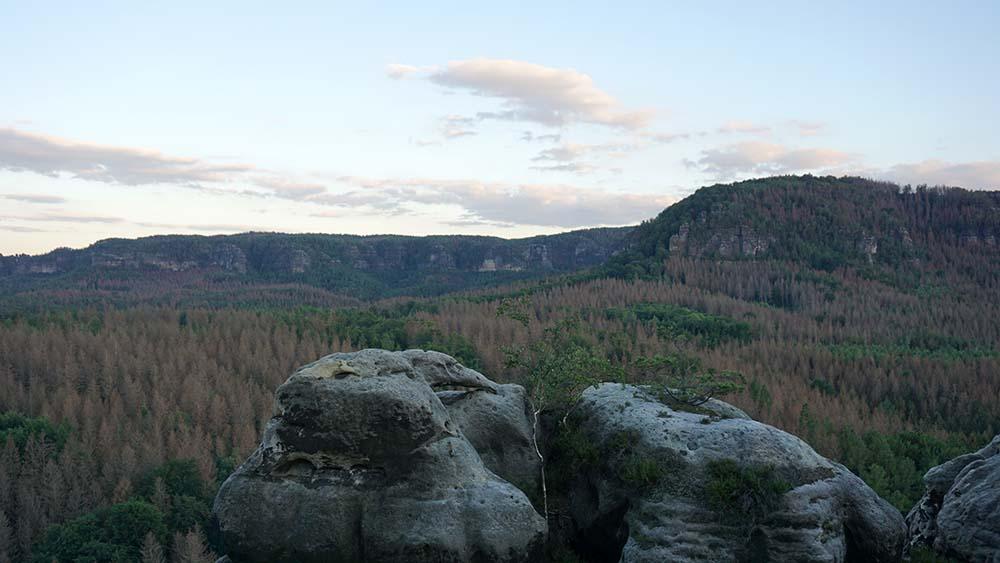Felsformationen und Wald